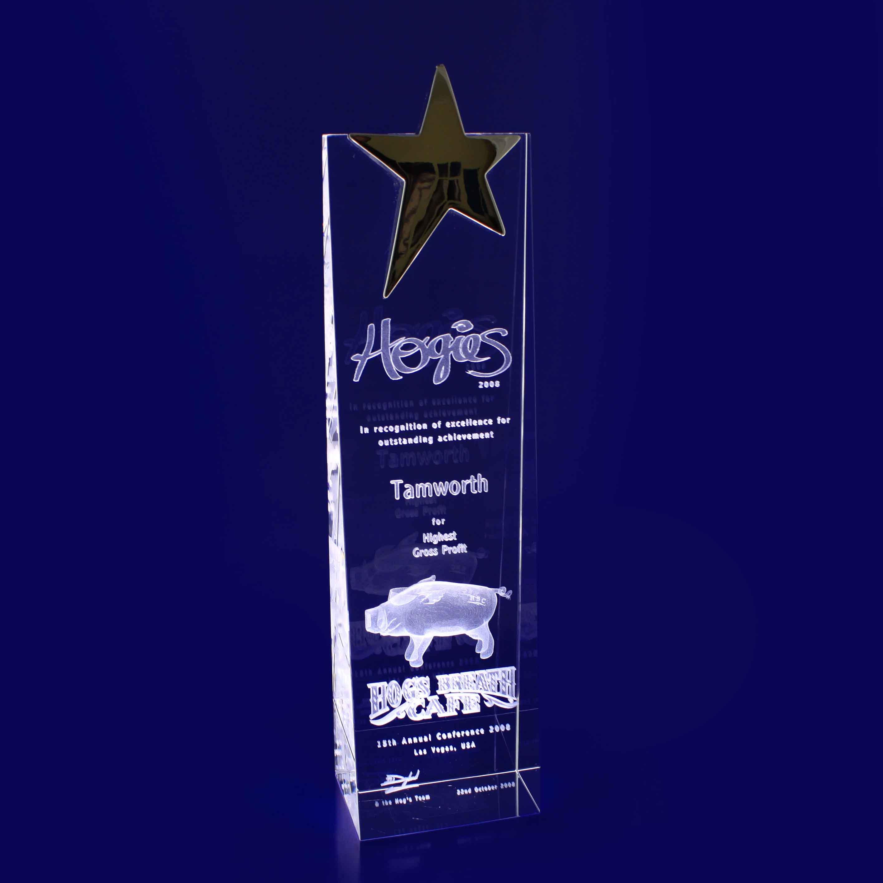 3D Crystal - Star Wedge Trophy